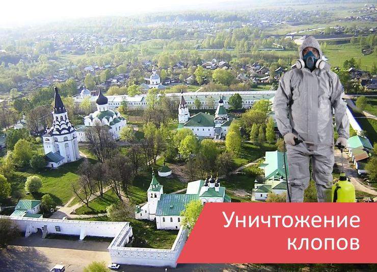 Уничтожение клопов Александров