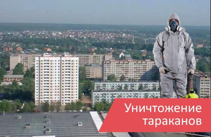 Уничтожение тараканов Дедовск