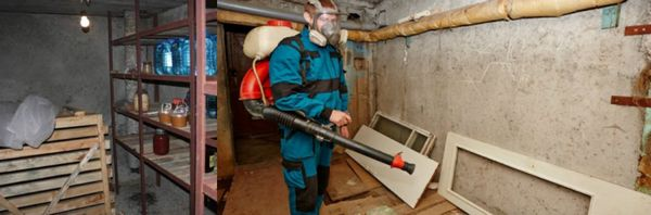 дезинфекция стены погреба производится с использование хлорной извести