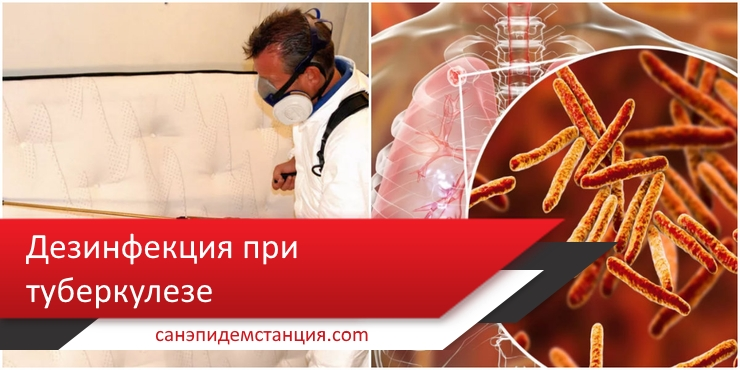 обработка помещения при туберкулезе