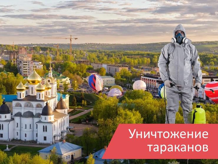 Уничтожение тараканов Дмитров