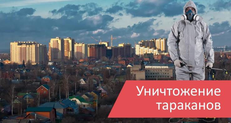 Уничтожение тараканов Домодедово