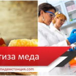 Экспертиза и анализ меда