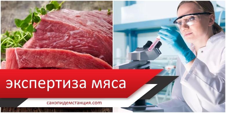 Экспертиза мяса