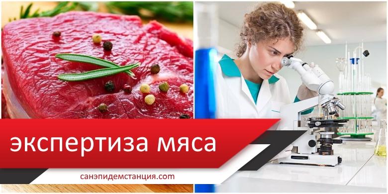 Микробиологическое исследование мяса