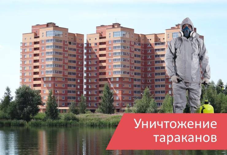 Уничтожение тараканов Электрогорск