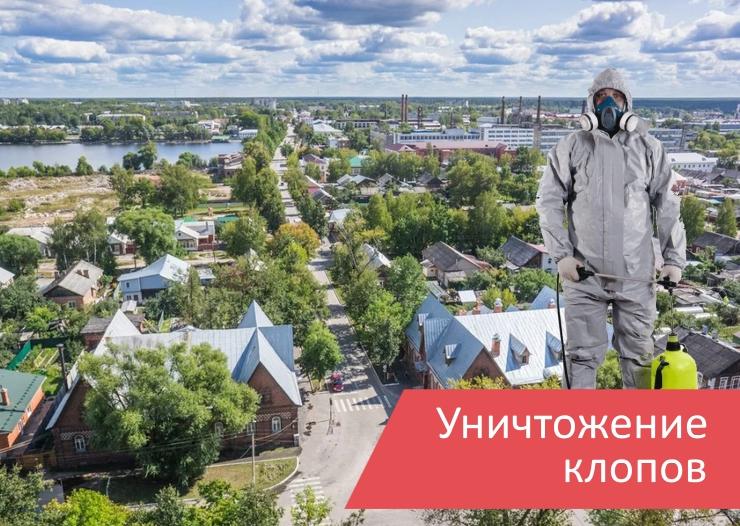 Уничтожение клопов Гусь-Хрустальный
