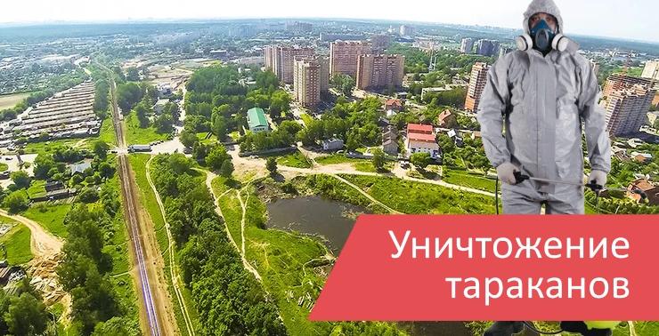 Уничтожение тараканов Ивантеевка