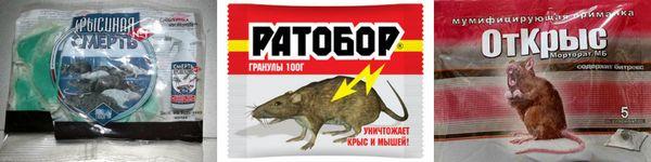 средства избавления от крыс в домашних условиях