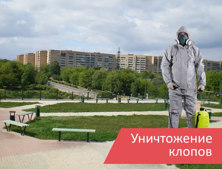 Уничтожение клопов Климовск