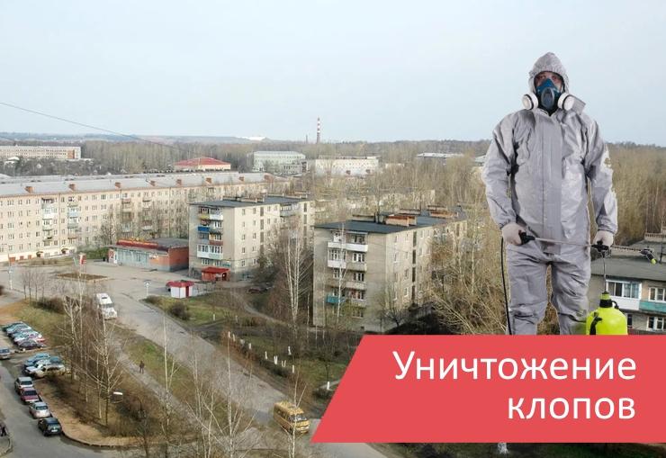 Уничтожение клопов Краснозаводск