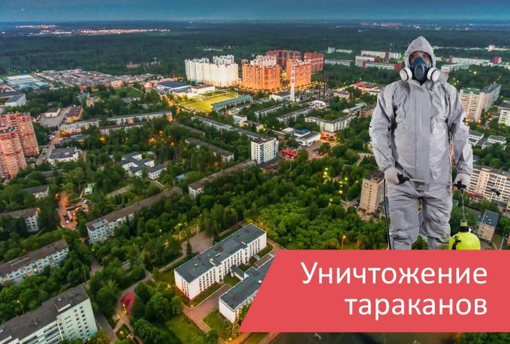 Уничтожение тараканов Краснознаменск