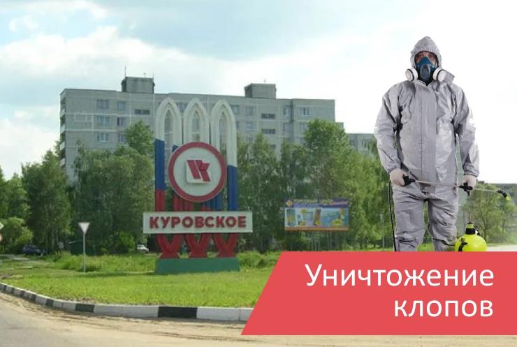 Уничтожение клопов Куровское