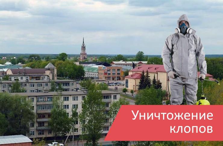 Уничтожение клопов Можайск