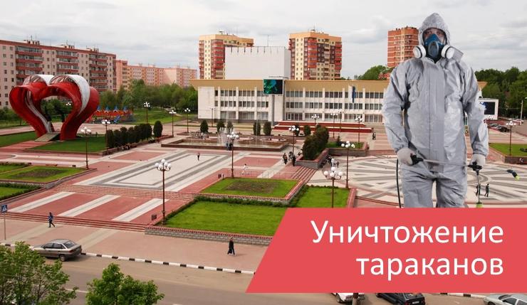 Уничтожение тараканов Наро-Фоминск