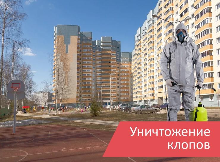 Уничтожение клопов Некрасовский