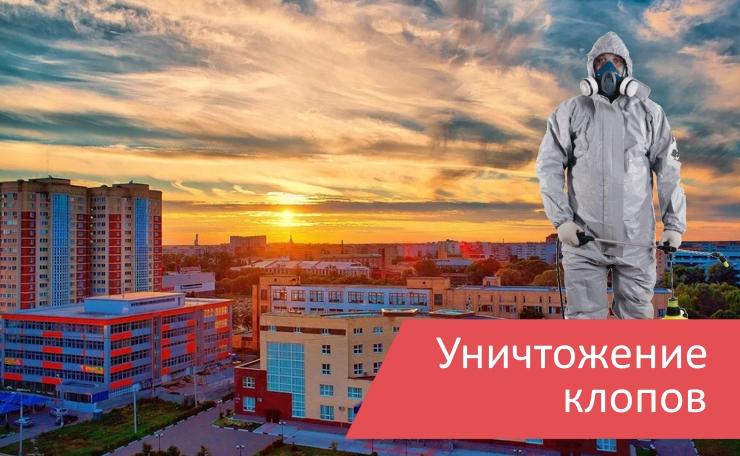 Уничтожение клопов Орехово-Зуево