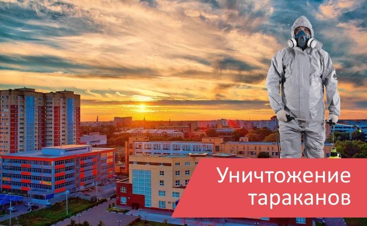Уничтожение тараканов Орехово-Зуево