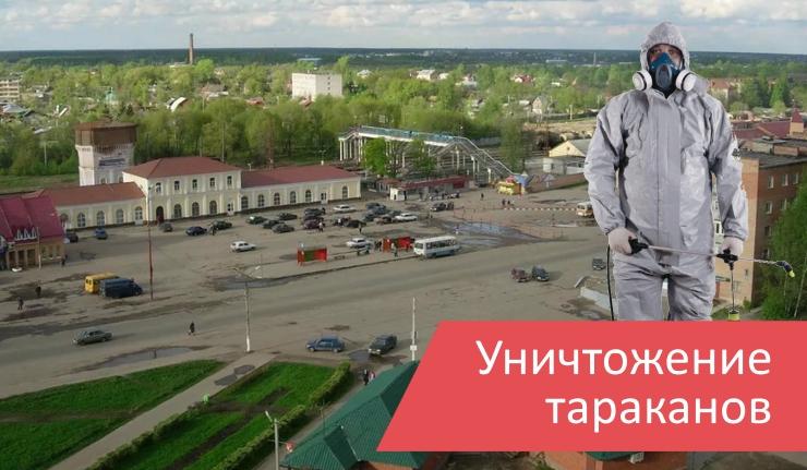 Уничтожение тараканов Павловский Посад