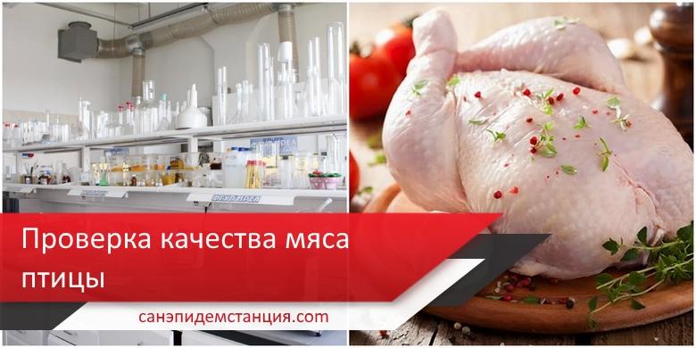 анализ мяса птицы