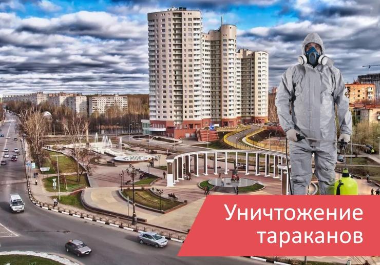Уничтожение тараканов Пушкино