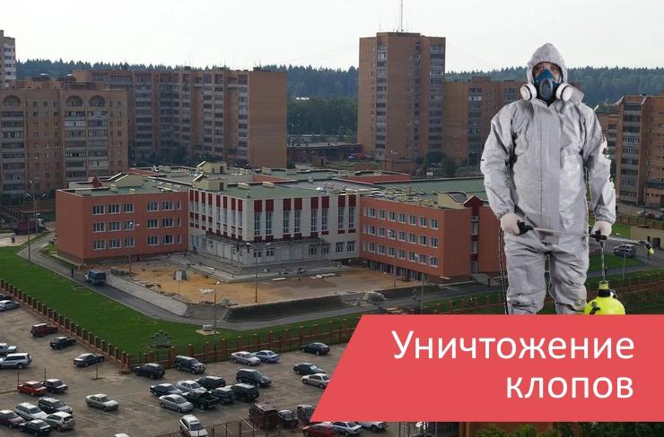Уничтожение клопов Селятино