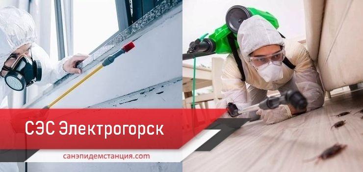 санэпидемстанция Электрогорск