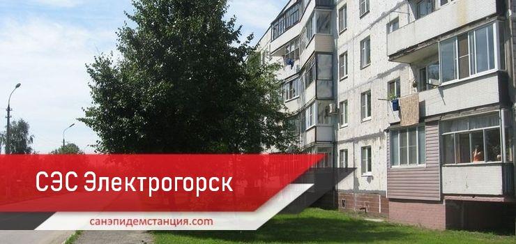 сэс Электрогорск