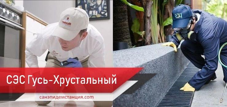 Санэпидемстанция Гусь-Хрустальный