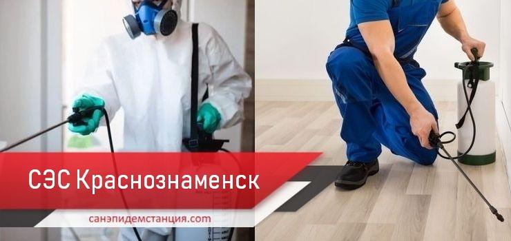 санэпидемстанция Краснознаменск