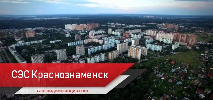 сэс Краснознаменск