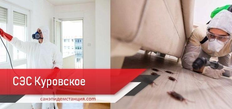 санэпидемстанцияКуровское