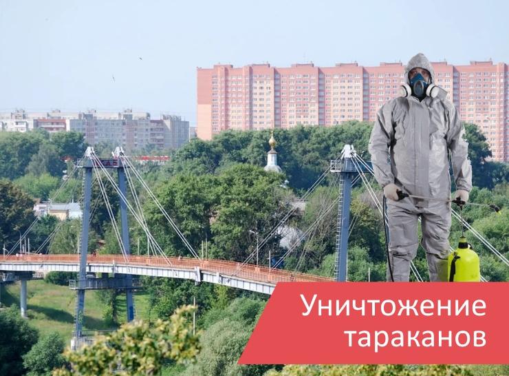 Уничтожение тараканов Воскресенск